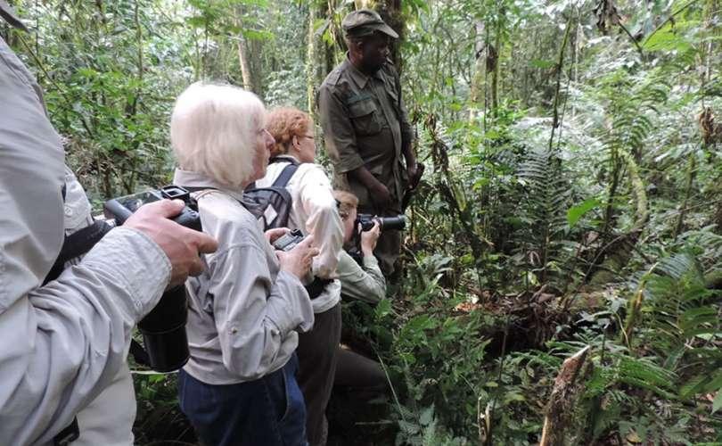 Uganda Safari Adventure