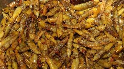 Nsenene A Local Delicacy in Uganda