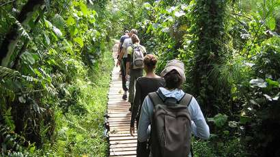 Budongo Forest Nature Walk